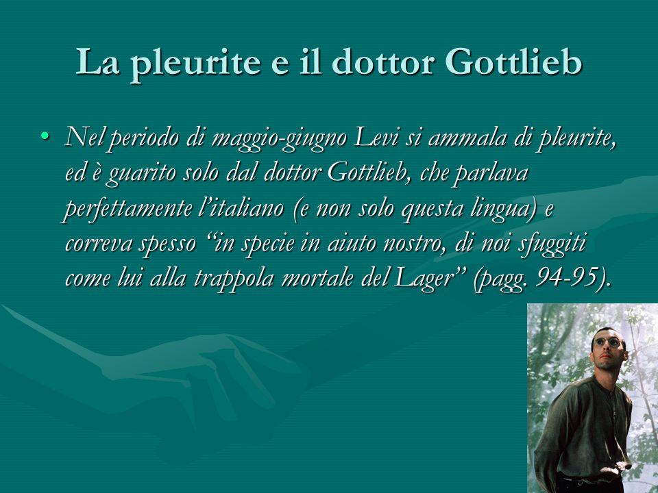 La pleurite e il dottor Gottlieb