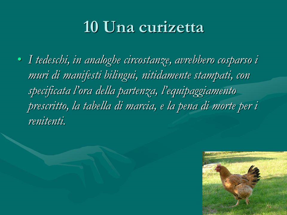10 Una curizetta