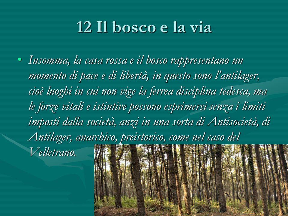 12 Il bosco e la via