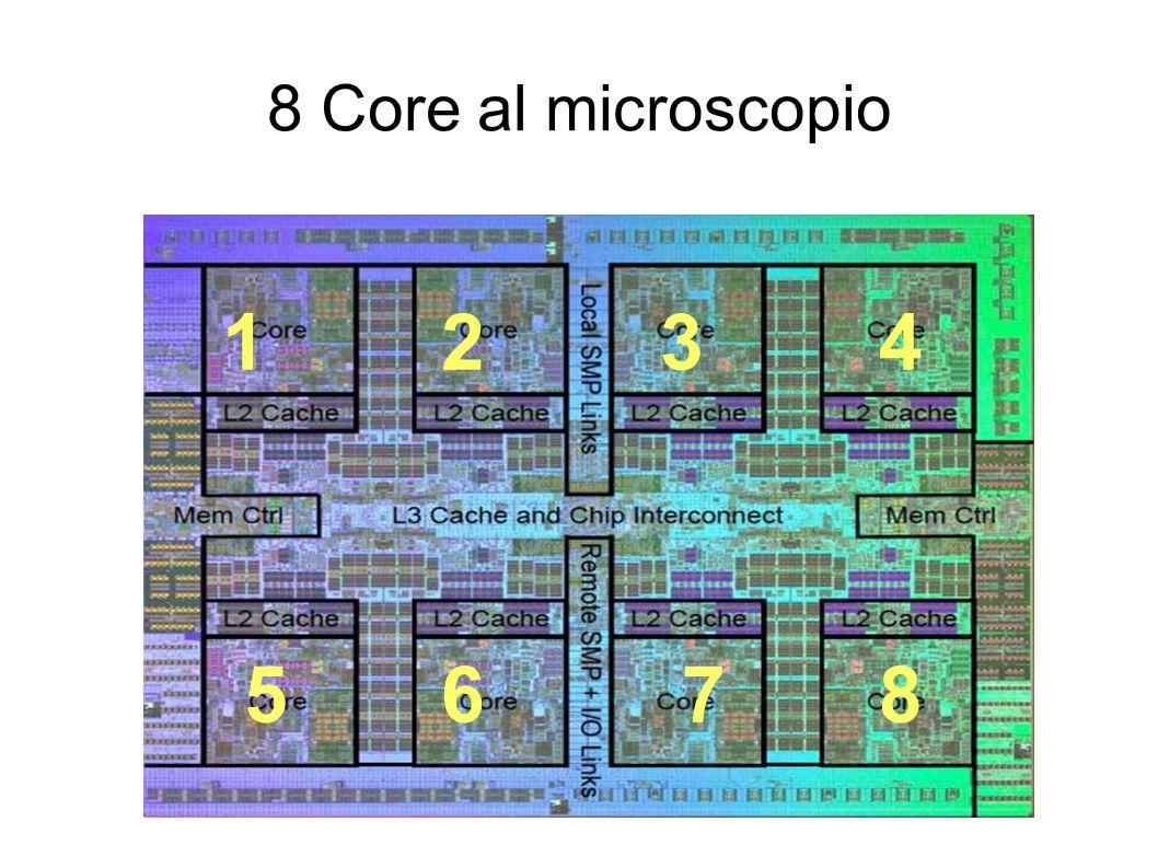 8 Core al microscopio 1 2 3 4 5 6 7 8