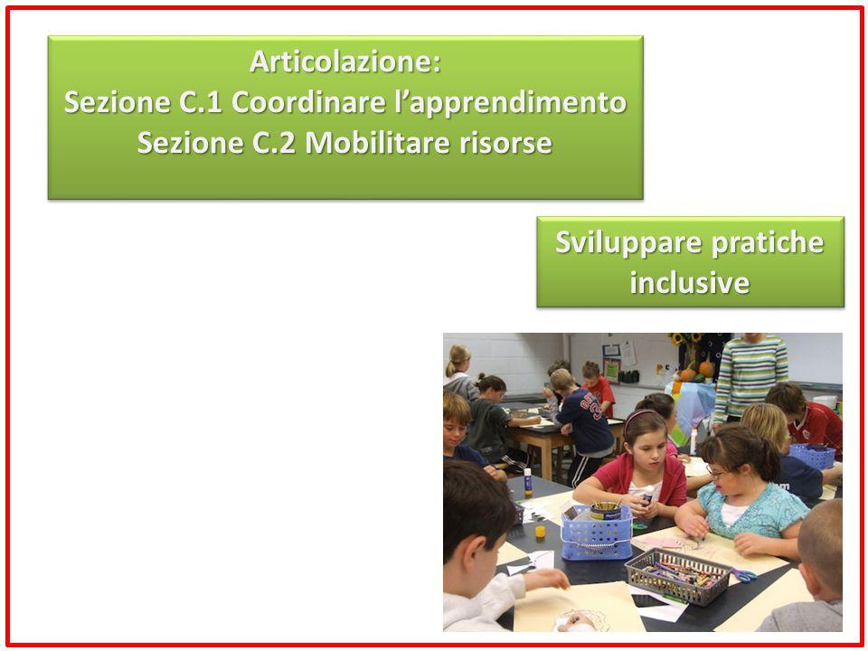 Sezione C.1 Coordinare l'apprendimento Sezione C.2 Mobilitare risorse
