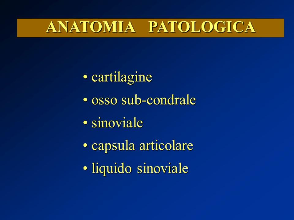 ANATOMIA PATOLOGICA cartilagine osso sub-condrale sinoviale