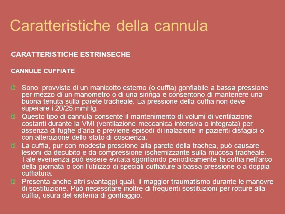 Caratteristiche della cannula