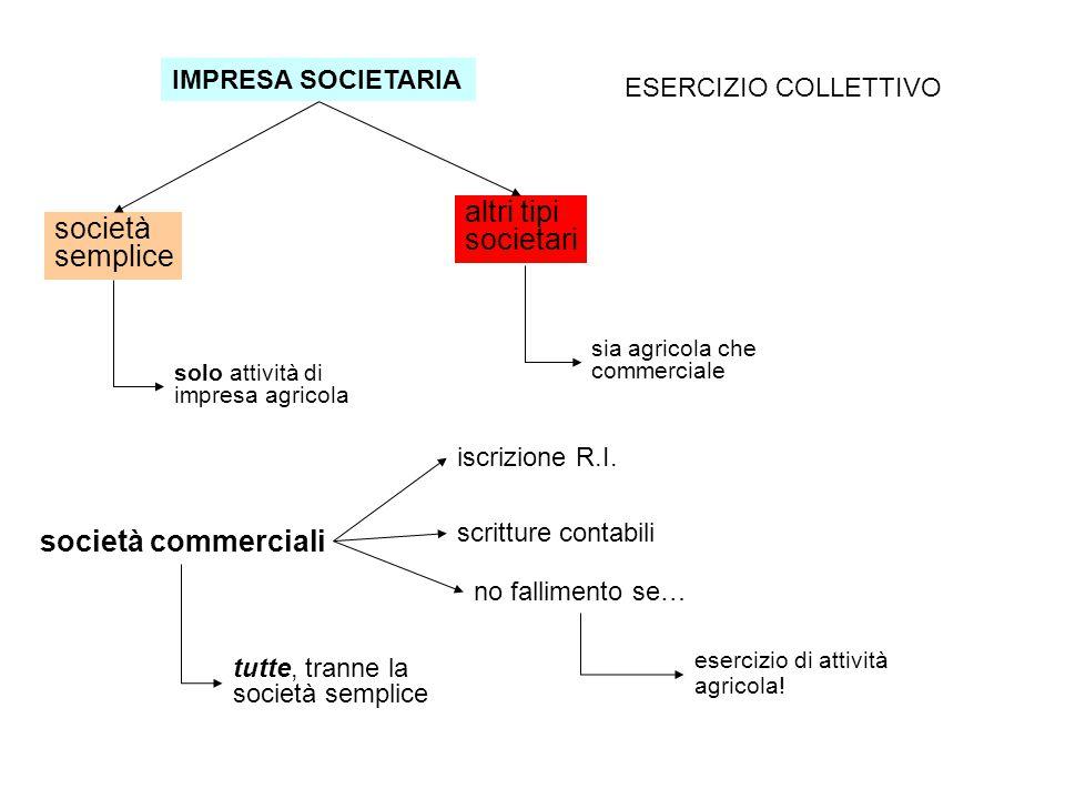altri tipi societari società semplice società commerciali