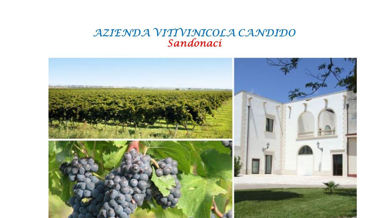 AZIENDA VITIVINICOLA CANDIDO Sandonaci