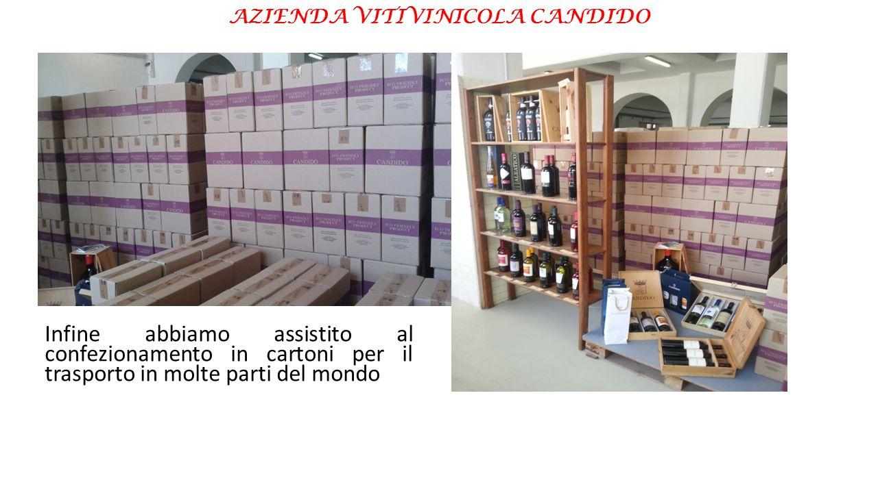 AZIENDA VITIVINICOLA CANDIDO