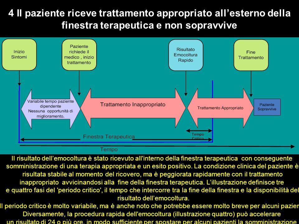 4 Il paziente riceve trattamento appropriato all'esterno della finestra terapeutica e non sopravvive