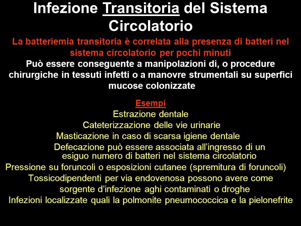 Infezione Transitoria del Sistema Circolatorio