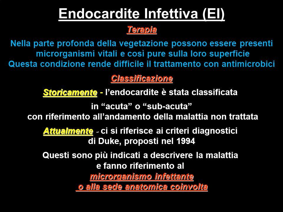Endocardite Infettiva (EI)