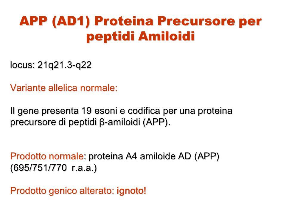 APP (AD1) Proteina Precursore per peptidi Amiloidi