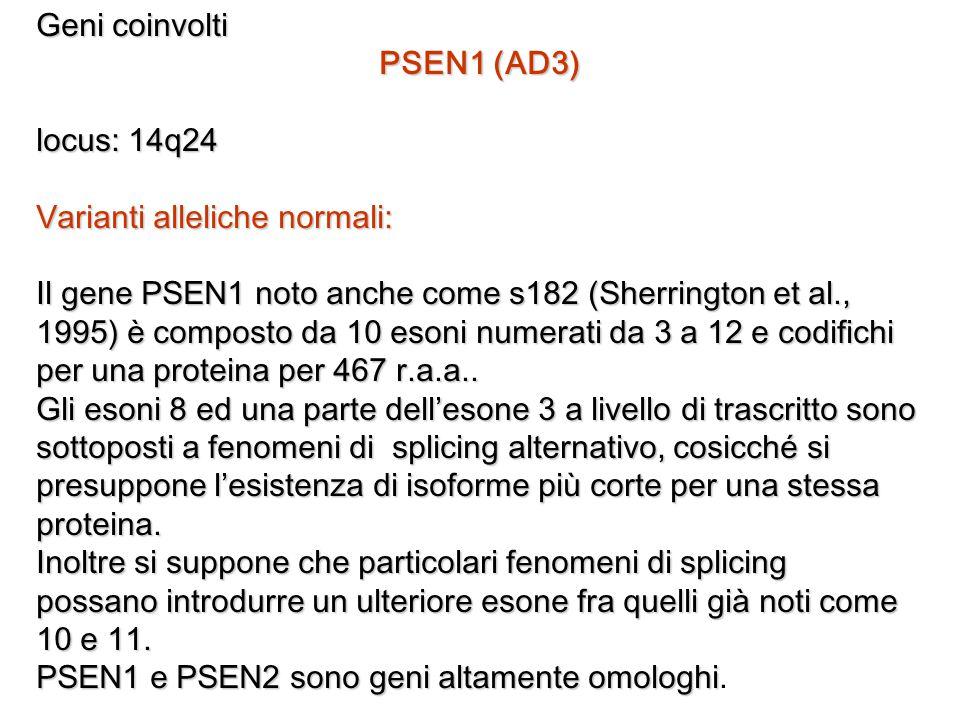 Geni coinvolti PSEN1 (AD3) locus: 14q24. Varianti alleliche normali: