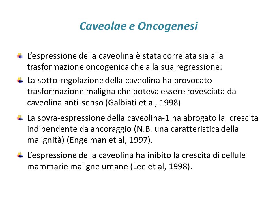 Caveolae e Oncogenesi L'espressione della caveolina è stata correlata sia alla trasformazione oncogenica che alla sua regressione: