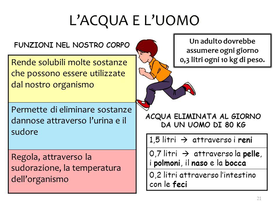 L'ACQUA E L'UOMO Un adulto dovrebbe assumere ogni giorno. 0,3 litri ogni 10 kg di peso. FUNZIONI NEL NOSTRO CORPO.