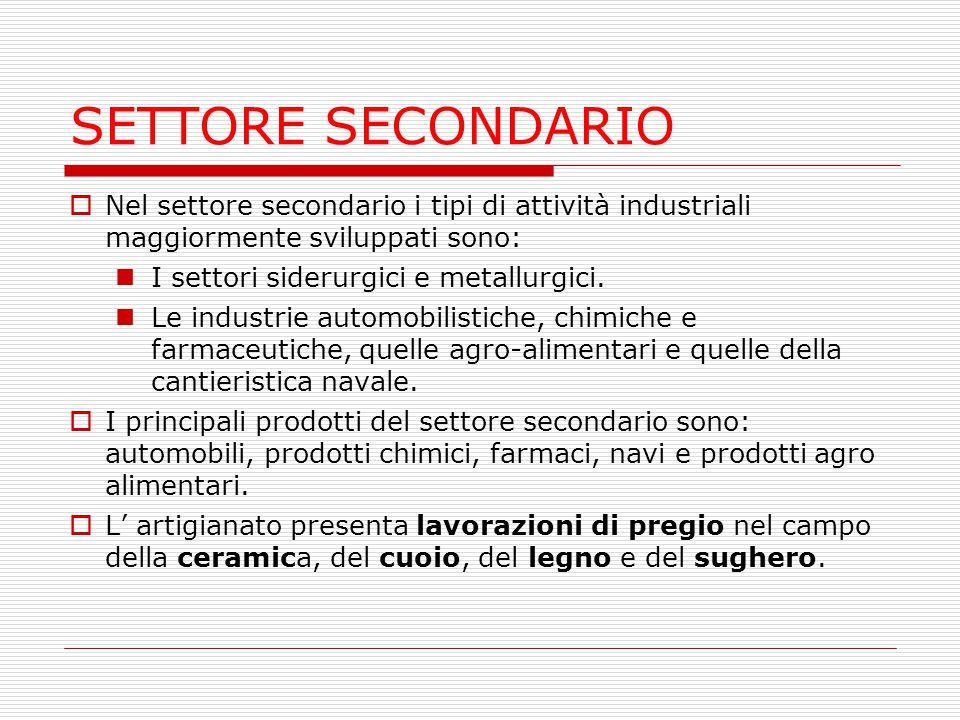 SETTORE SECONDARIO Nel settore secondario i tipi di attività industriali maggiormente sviluppati sono: