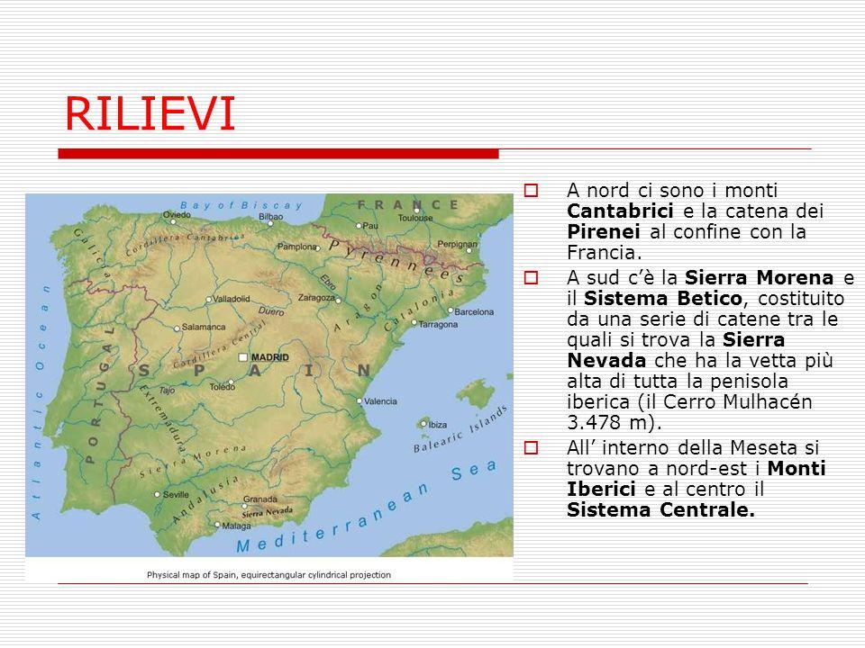 RILIEVI A nord ci sono i monti Cantabrici e la catena dei Pirenei al confine con la Francia.