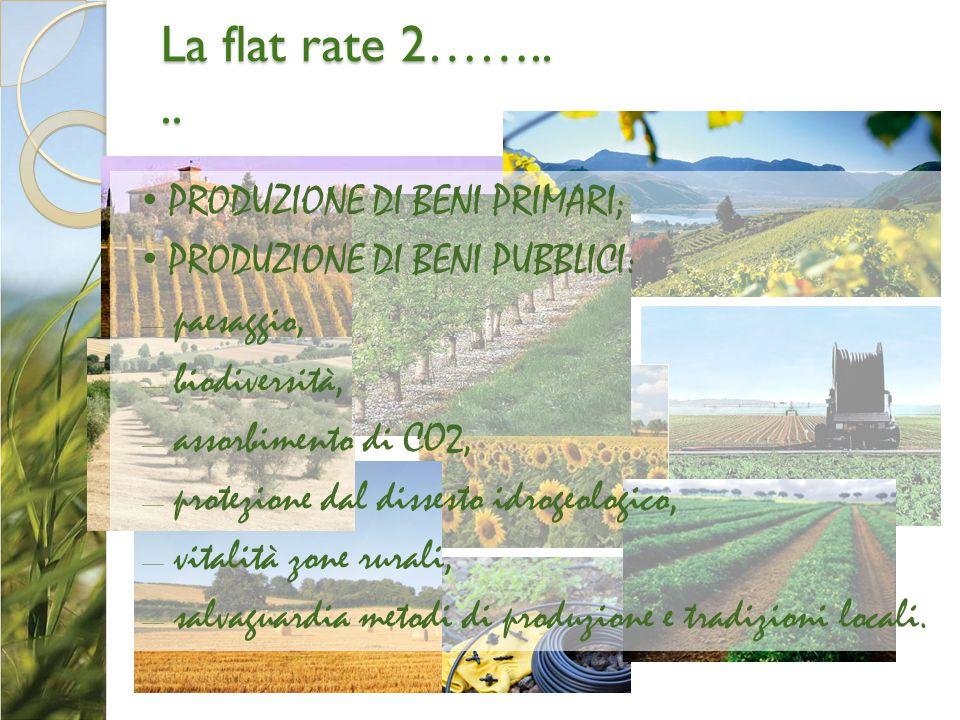 La flat rate 2…….. .. PRODUZIONE DI BENI PRIMARI;
