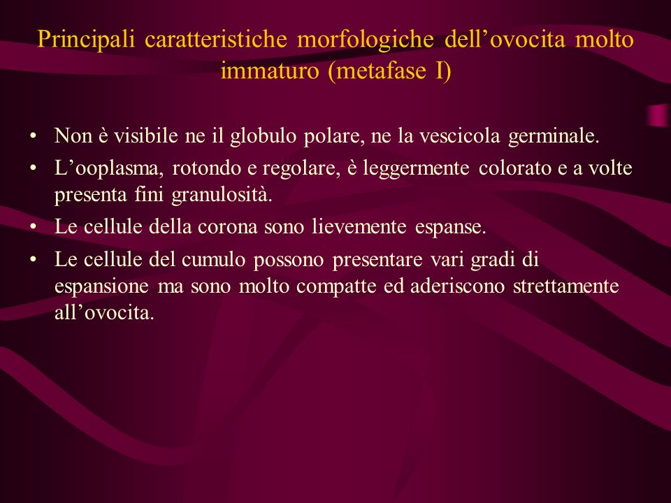Principali caratteristiche morfologiche dell'ovocita molto immaturo (metafase I)