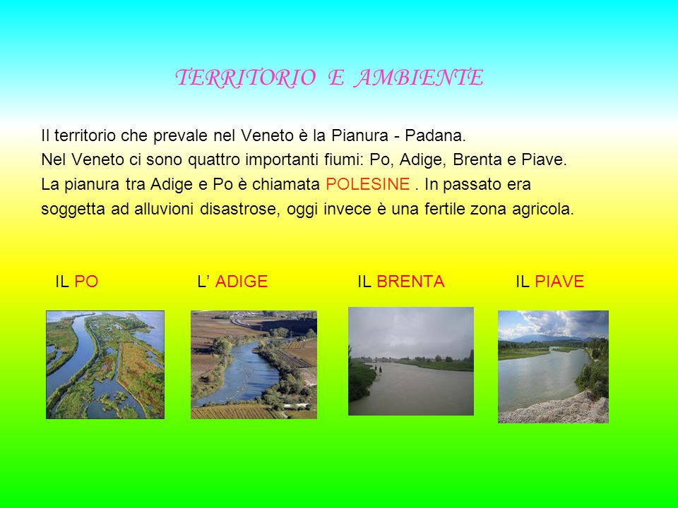 TERRITORIO E AMBIENTE Il territorio che prevale nel Veneto è la Pianura - Padana.
