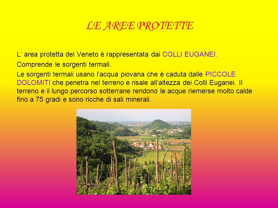 LE AREE PROTETTE