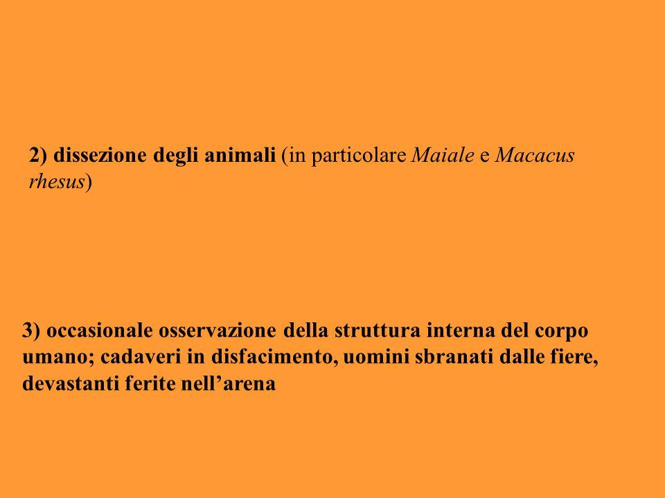 2) dissezione degli animali (in particolare Maiale e Macacus rhesus)