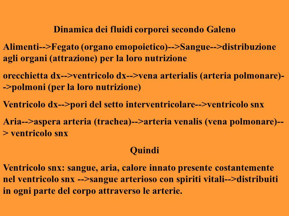 Dinamica dei fluidi corporei secondo Galeno