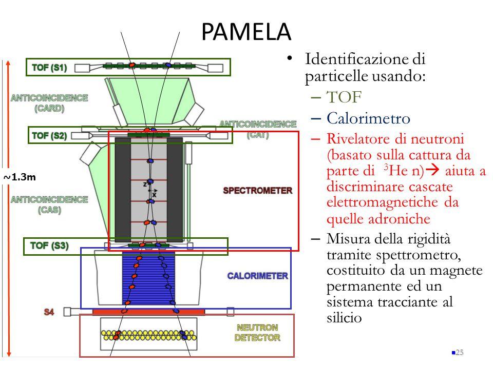PAMELA Identificazione di particelle usando: TOF Calorimetro