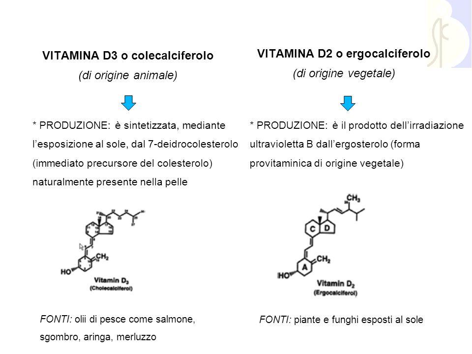 VITAMINA D3 o colecalciferolo VITAMINA D2 o ergocalciferolo