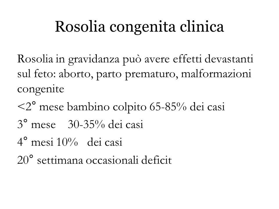 Rosolia congenita clinica