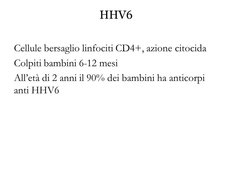 HHV6 Cellule bersaglio linfociti CD4+, azione citocida