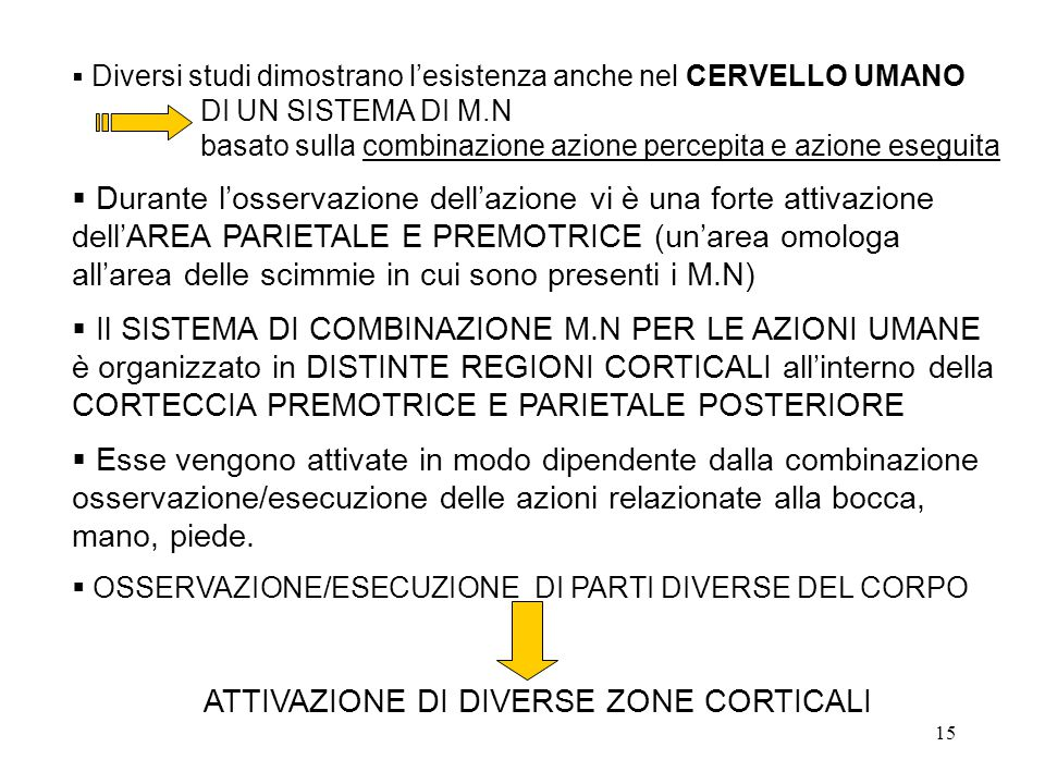 ATTIVAZIONE DI DIVERSE ZONE CORTICALI