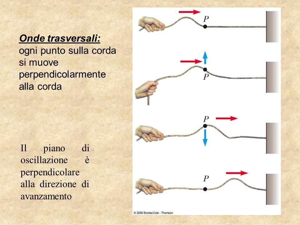 Onde trasversali: ogni punto sulla corda. si muove. perpendicolarmente. alla corda.