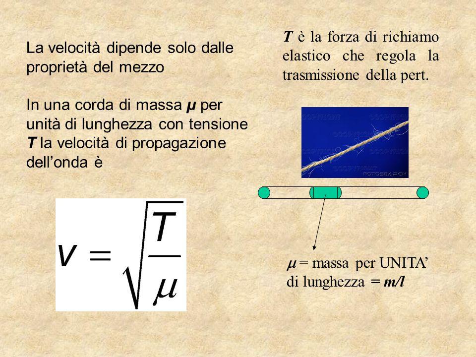 T è la forza di richiamo elastico che regola la trasmissione della pert.
