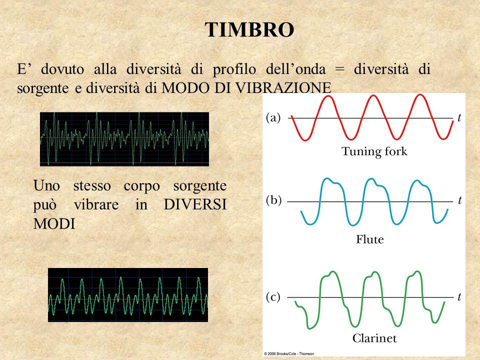 TIMBRO E' dovuto alla diversità di profilo dell'onda = diversità di sorgente e diversità di MODO DI VIBRAZIONE.