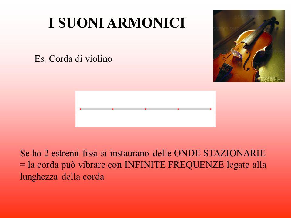 I SUONI ARMONICI Es. Corda di violino
