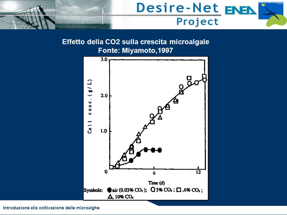 Effetto della CO2 sulla crescita microalgale