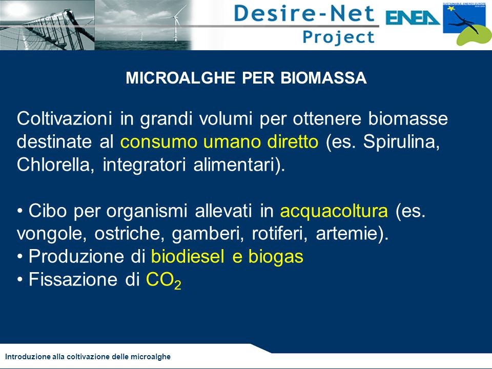 MICROALGHE PER BIOMASSA