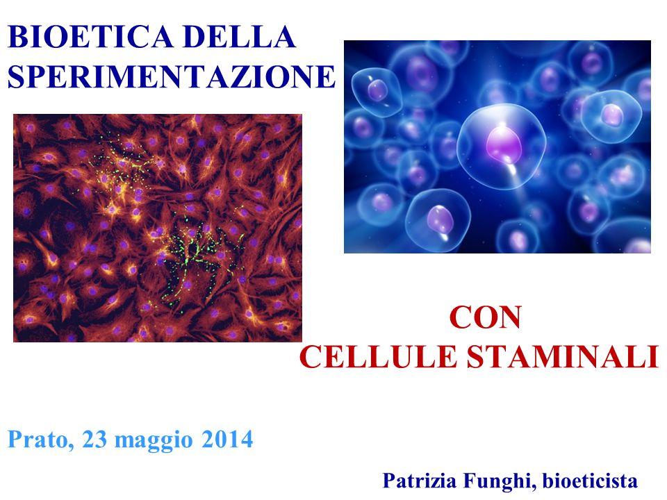 BIOETICA DELLA SPERIMENTAZIONE CON CELLULE STAMINALI Prato, 23 maggio 2014 Patrizia Funghi, bioeticista