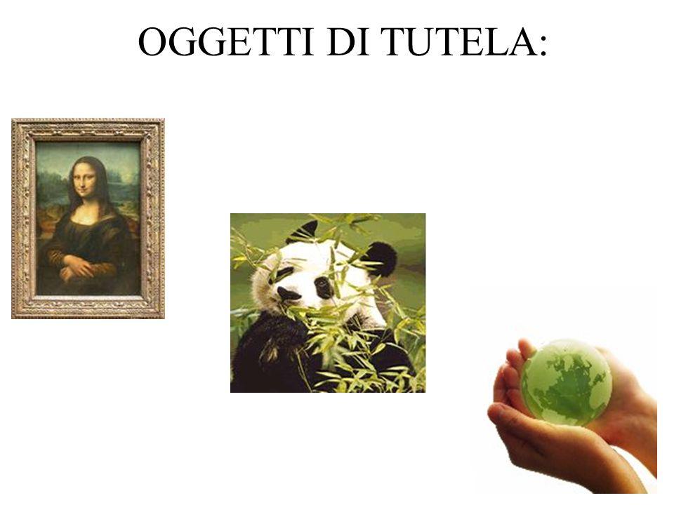 OGGETTI DI TUTELA: