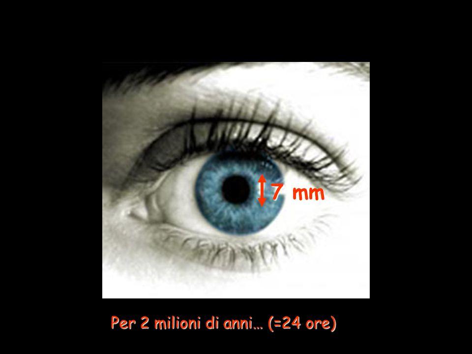 7 mm Per 2 milioni di anni… (=24 ore)