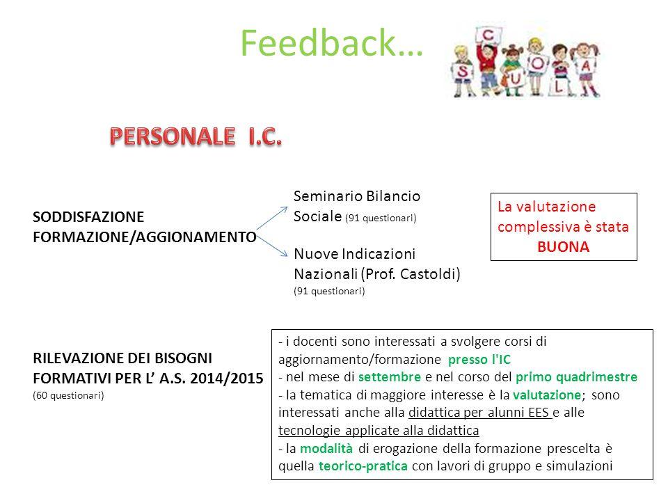 Feedback… PERSONALE I.C. Seminario Bilancio Sociale (91 questionari)
