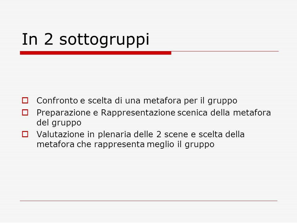 In 2 sottogruppi Confronto e scelta di una metafora per il gruppo