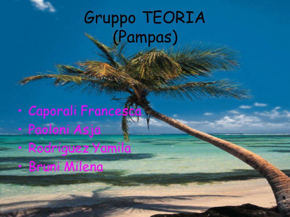 Gruppo TEORIA (Pampas)