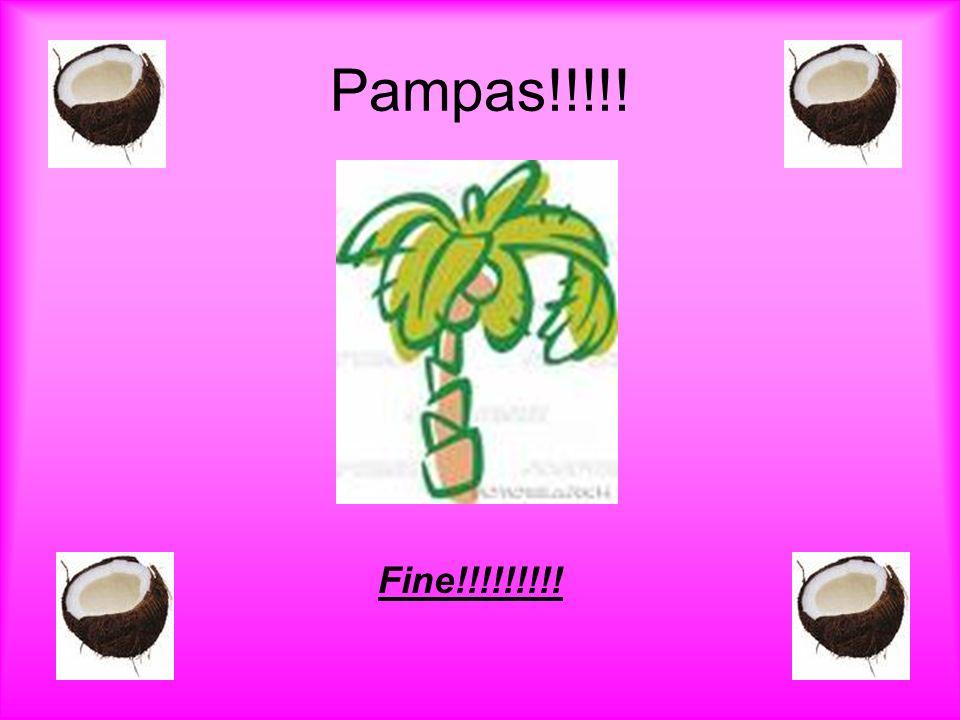Pampas!!!!! Fine!!!!!!!!!