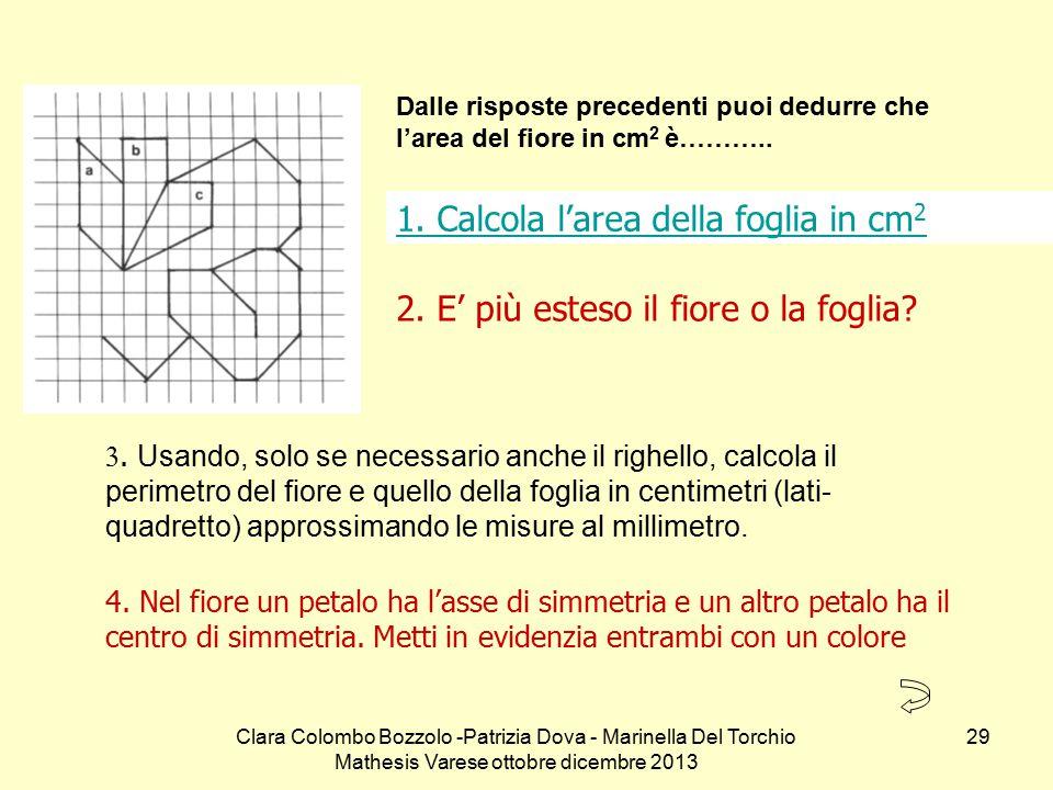 1. Calcola l'area della foglia in cm2