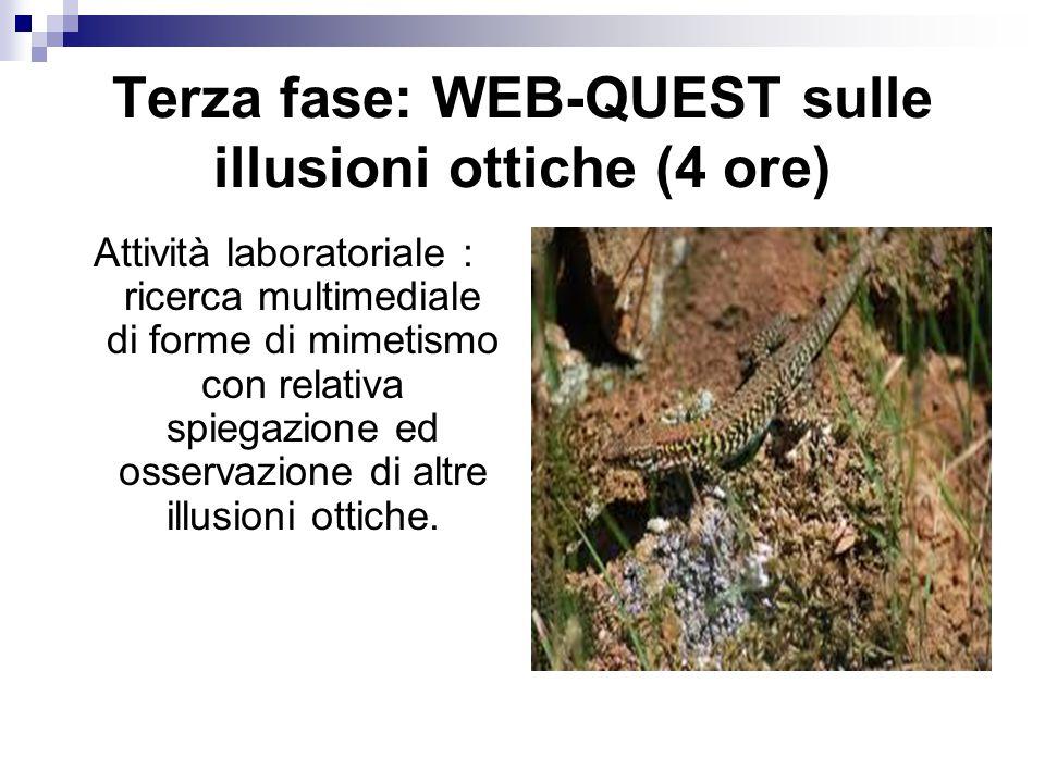 Terza fase: WEB-QUEST sulle illusioni ottiche (4 ore)