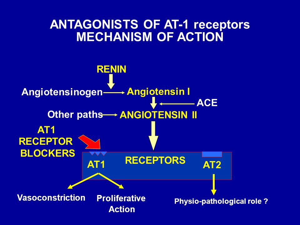 ANTAGONISTS OF AT-1 receptors Angiotensin I ANGIOTENSIN II