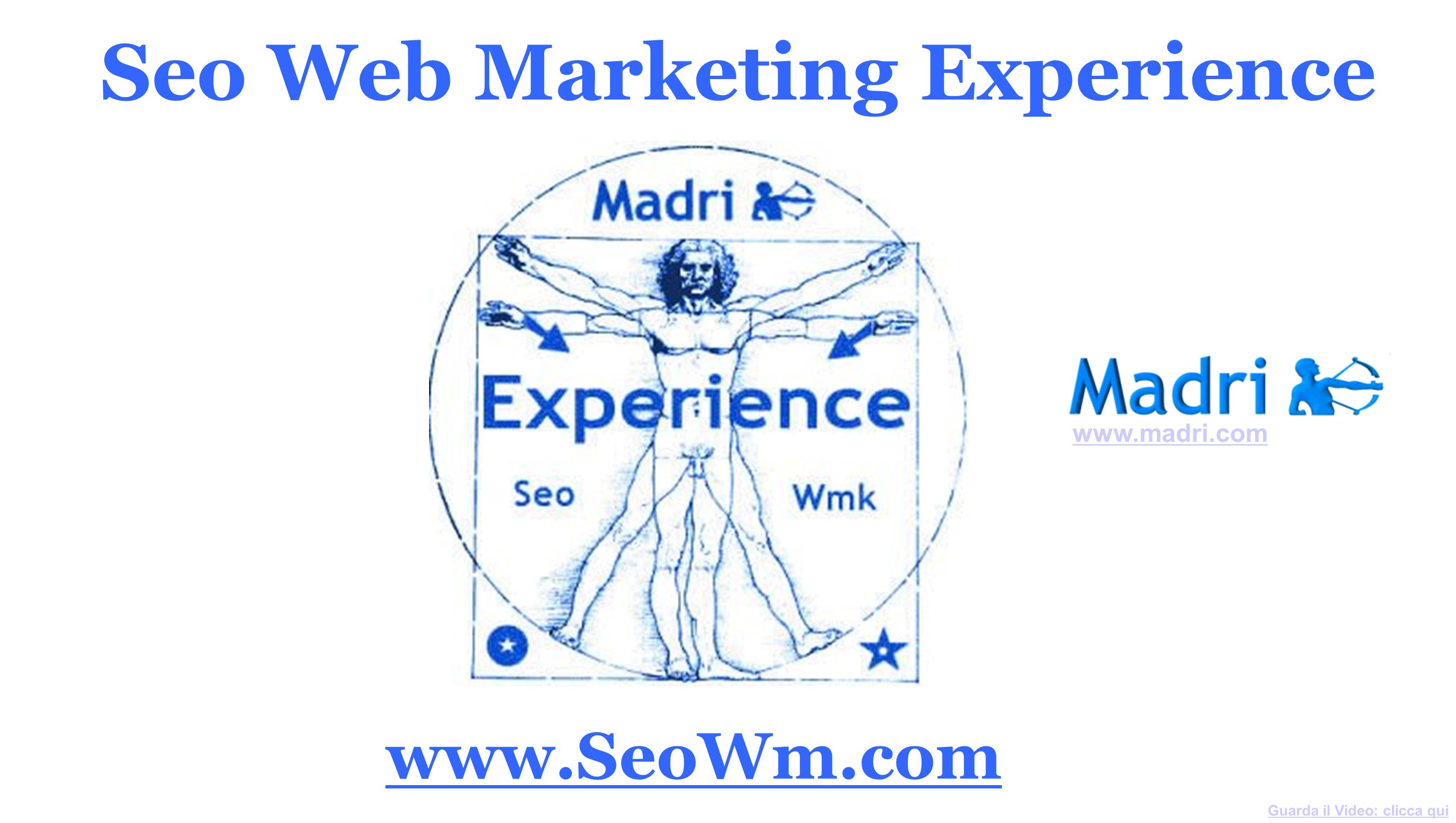 Seo Web Marketing Experience