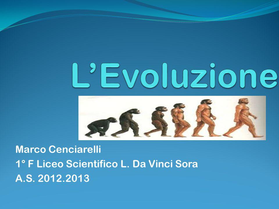 L'Evoluzione Marco Cenciarelli 1° F Liceo Scientifico L. Da Vinci Sora