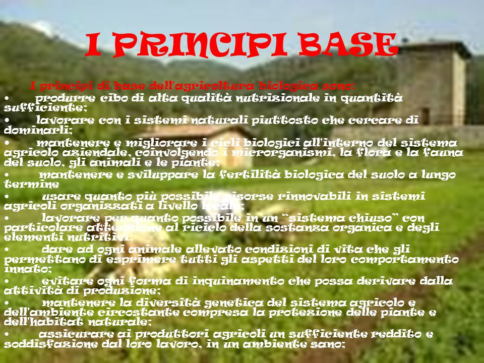 I PRINCIPI BASE I principi di base dell agricoltura biologica sono: