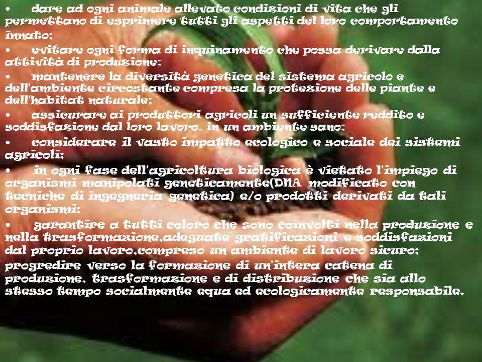 • dare ad ogni animale allevato condizioni di vita che gli permettano di esprimere tutti gli aspetti del loro comportamento